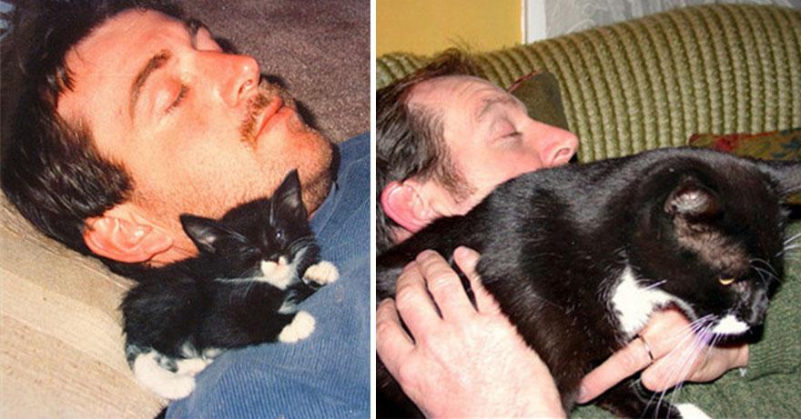 貓咪成長照13