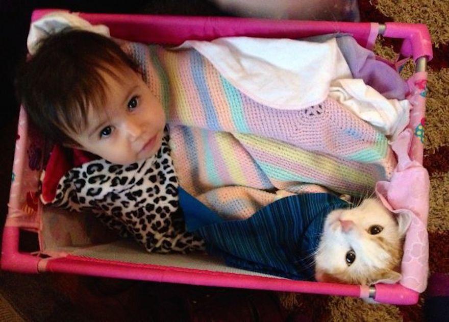 貓與小孩1
