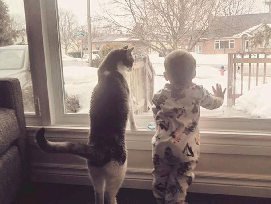 貓與小孩4