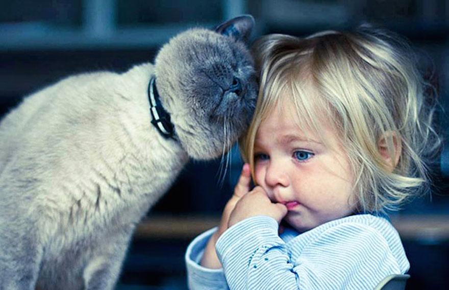 貓與小孩5