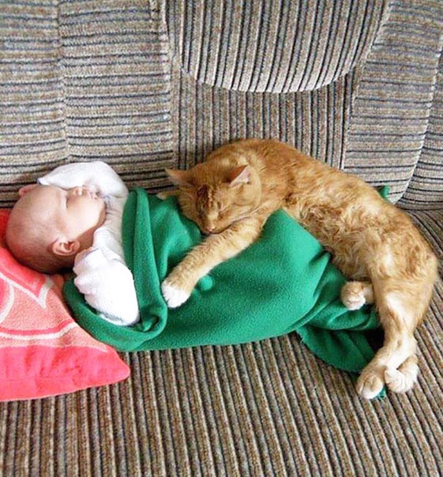 貓與小孩6