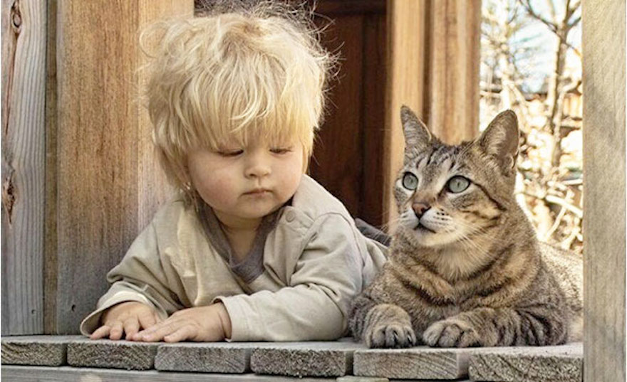 貓與小孩21