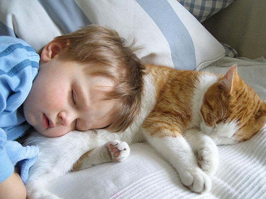 貓與小孩8