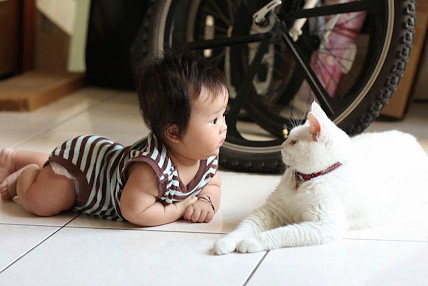 貓與小孩11