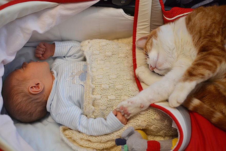 貓與小孩22