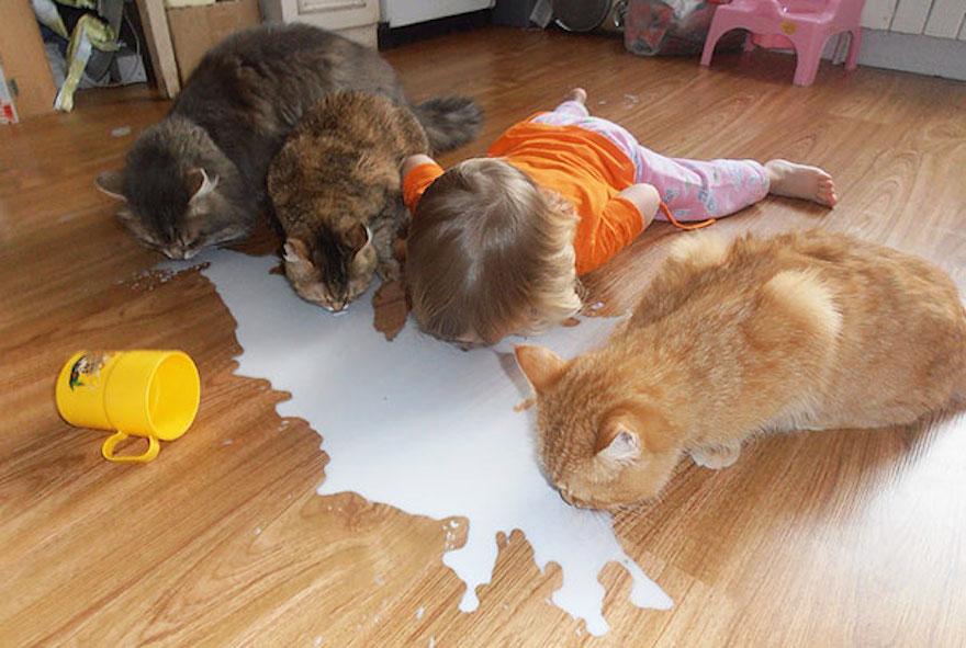 貓與小孩14