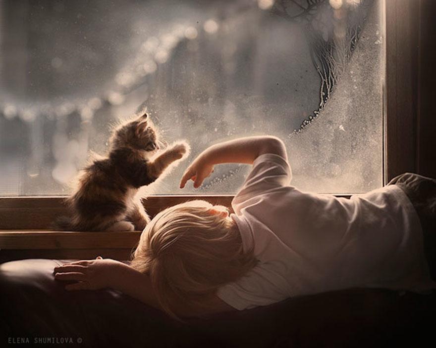 貓與小孩15