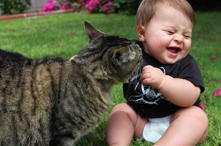 貓與小孩17