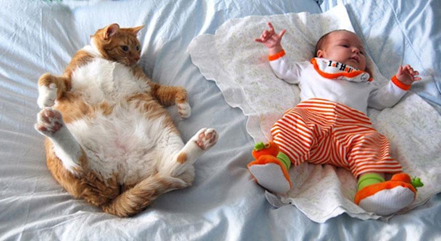 貓與小孩24